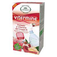 L'Angelica Vitermine - Vitamine Gruppo B e Potassio 12 Stick